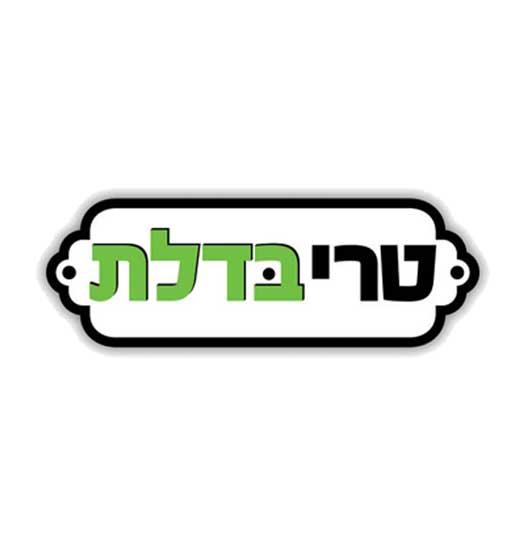 עיצוב לוגו משלוחים טרי בדלת
